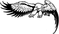 ernie-ball-eagle-blackm
